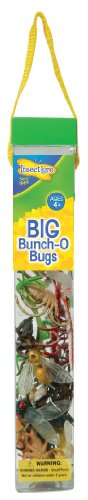 Insect Lore Bunch O' Bugs from Insect Lore