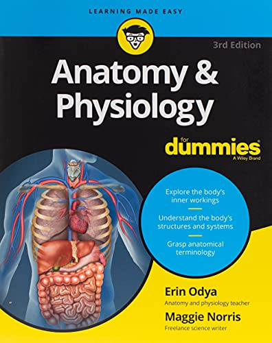 Anatomy and Physiology For Dummies, 3rd Edition (For Dummies (Lifestyle)) from For Dummies
