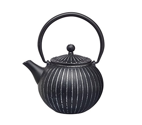 KitchenCraft Le'Xpress 2-Cup Cast Iron Japanese-Style Teapot with Infuser, 500 ml (17.5 fl oz) - Black from KitchenCraft