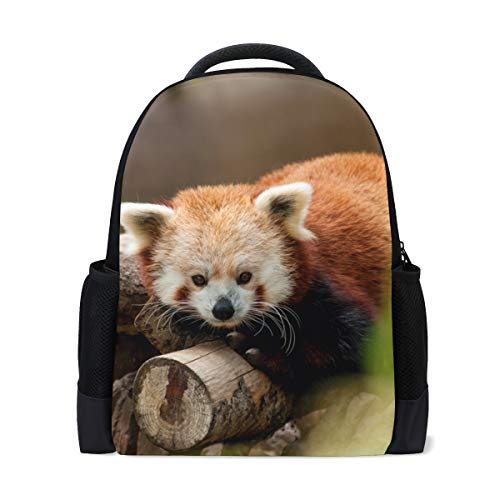 LIANCHENYI Red Panda Custom Casual Backpack School Bag Travel Backpack Daypack from LIANCHENYI