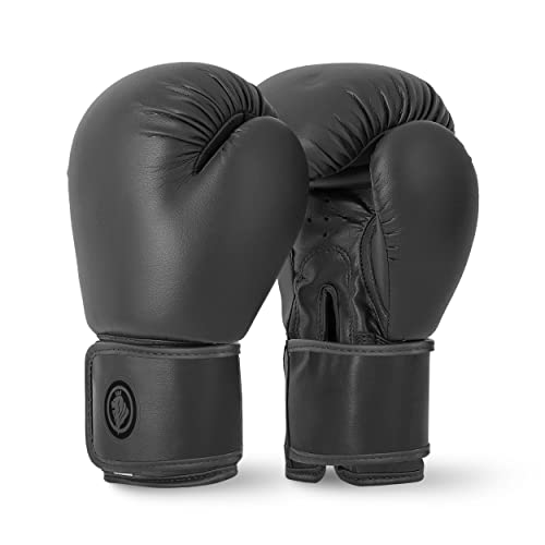 Lions Boxing Gloves MMA Punch Bag Training Mitts 6oz, 8oz, 10oz, Black (Black, 10oz) from Lions