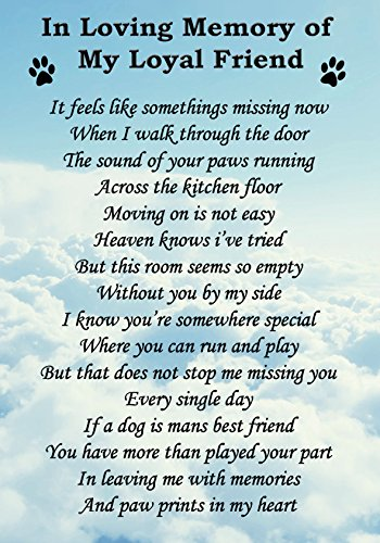 In Loving Memory Of My Loyal Dog Friend Memorial Graveside Poem Keepsake Card Includes Free Ground Stake F74 from Lisasgiftsforyou