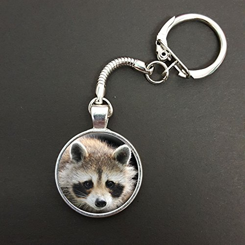 Raccoon Pendant On A Snake Keyring Ideal Birthday Gift N375 from Lisasgiftsforyou