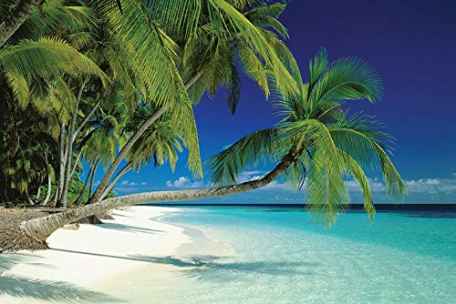 "Pyramid International "" Maldives Beach Maxi Poster, Multi-Colour, 61 x 91.5 x 1.3 cm from Pyramid International"