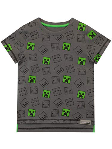 Minecraft Boys Minecraft T-Shirt, Multicoloured, Age 13 to 14 Years from Minecraft