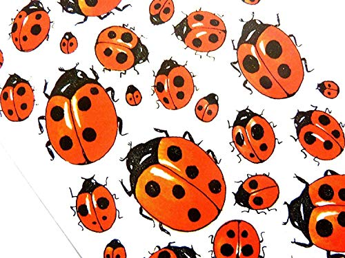 Ladybird Stickers Kids / Childrens Labels for party bags , scrap books , card making or notebook decoration from Minilabel