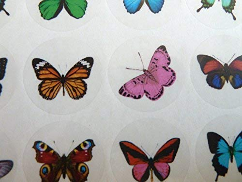 Small Butterfly, Circle Greeting Stickers, Colour on Clear Self-Stick Labels for Cards, Envelopes, Craft, Decoration from Minilabel
