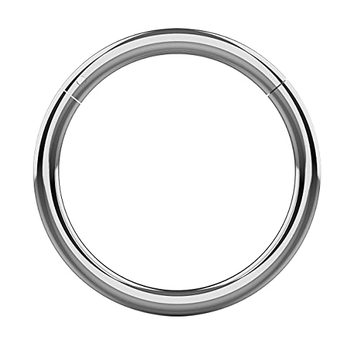 16 Gauge ( 1.2MM ) - 8MM Diameter 316L Surgical Steel Hinged Segment Nose Ring Piercing from Monster Piercing
