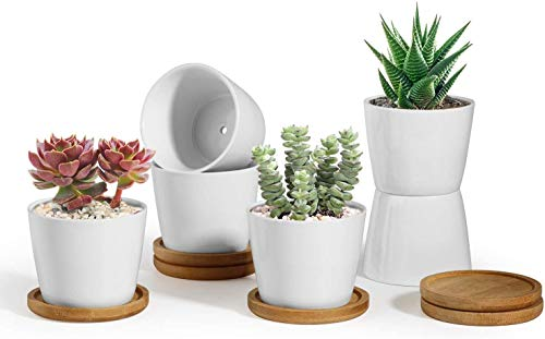 ComSaf 8.5CM Ceramic Succulent Plant Pot Cactus Planter Window Box with Bamboo Tray - Small White Pack of 6, Desktop Windowsill Office Decoration Birthday Wedding for Garden Lover from ComSaf