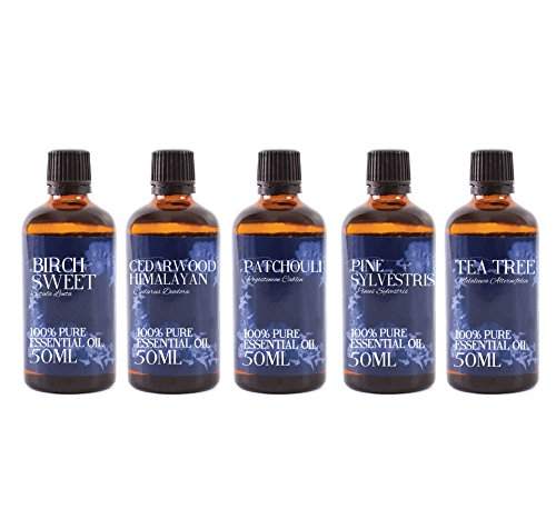 Mystic Moments | Gift Starter Pack of 5 x 50ml - Woodland - Essential Oils from Mystic Moments
