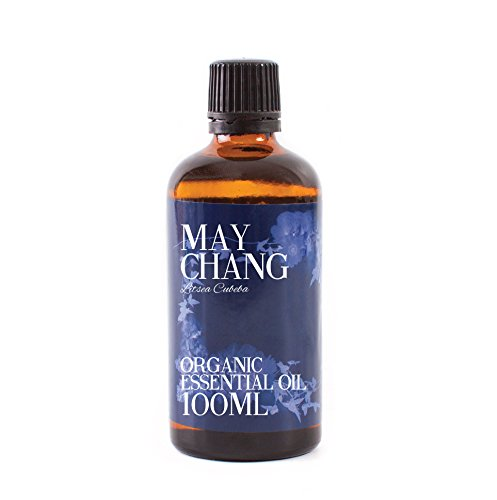Mystic Moments | Litsea Cubeba (May Chang) Organic Essential Oil - 100ml - 100% Pure from Mystic Moments