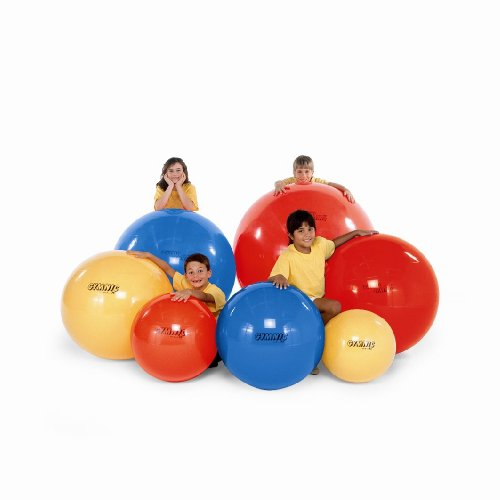 NRS Healthcare Gym Ball - 55 cm (21.5 inches) Diameter from NRS Healthcare
