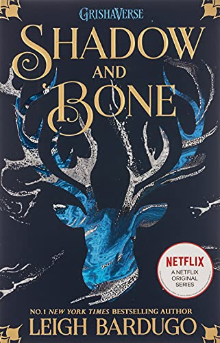 Shadow and Bone: Book 1 from Orion Children's Books