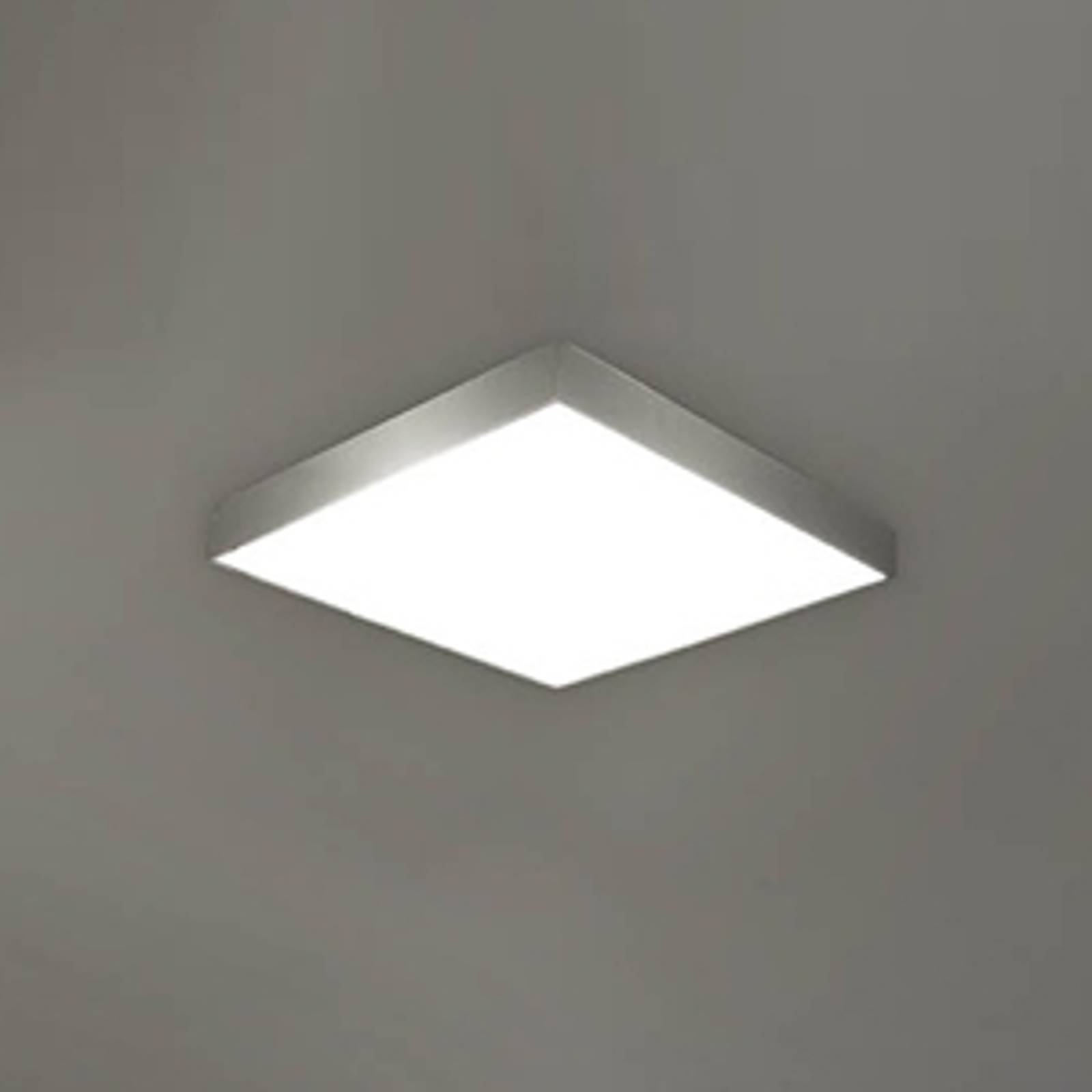 Apolo bathroom ceiling lamp IP44, 35 cm nickel from Pujol