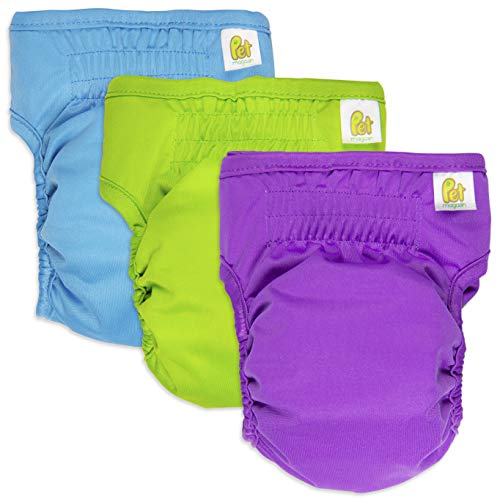 Pet Magasin Reusable Female Dog Diapers Panties, 3-Pack, Blue Green and Purple, Extra Small from Pet Magasin