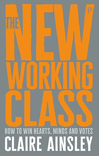 The new working class: How to win hearts, minds and votes from Policy Press