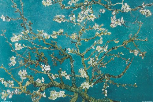 Almond Blossom, San Remy, 1890 Poster Print by Vincent van Gogh, 92x61 cm from Poster Revolution