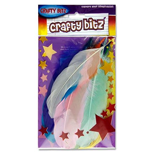 Premier Stationery Crafty Bitz Duck Feathers - Assorted from Premier Stationery