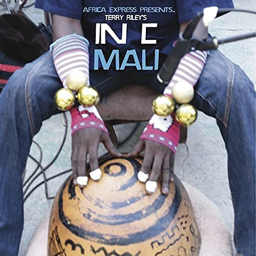 Africa Express Presents...Terry Riley's In C Mali from TRANSGRESSIVE