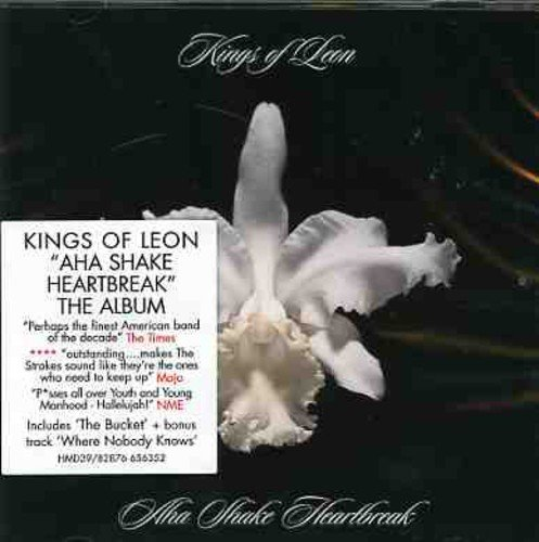 Aha Shake Heartbreak from Kings of Leon