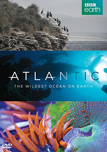 Atlantic: The Wildest Ocean on Earth [DVD] from Spirit Entertainment Limited