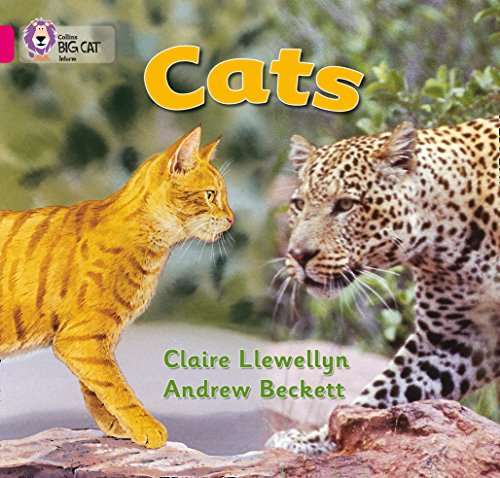 Cats: This simple non-fiction book compares pet cats and wild cats. (Collins Big Cat): Band 01b/Pink B from Collins
