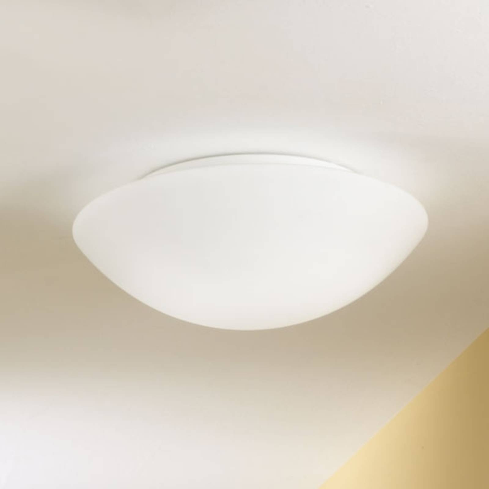 Ceiling and wall light PANDORA 25 cm from FABAS LUCE