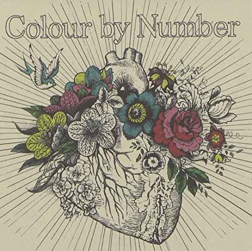 Color By Number: Deluxe Edition