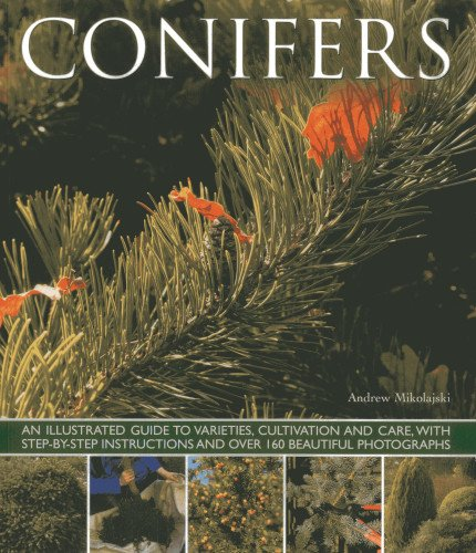 Conifers: An Illustrated Guide to Varieties, Cultivation and Care, with Step-By-Step Instructions and Over 160 Beautiful Photographs from Southwater Publishing