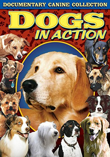 DOGS IN ACTION from Alpha Video