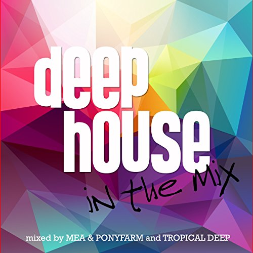 Deep House In The Mix from Zyx Music (ZYX)