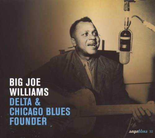 Delta And Chicago Blues Founder [Australian Import]