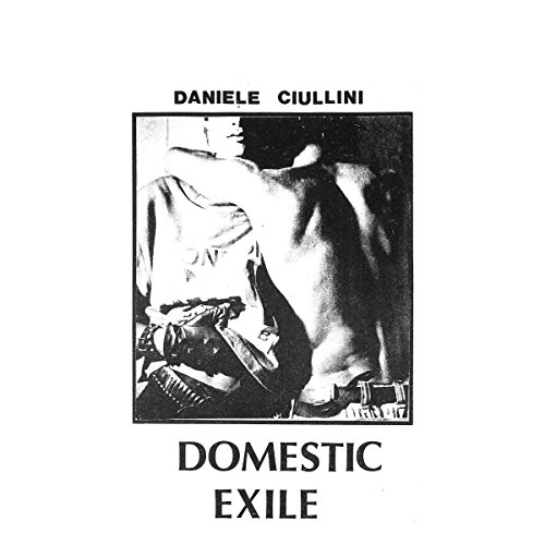 Domestic Exile Collected Works 82-86 [VINYL]