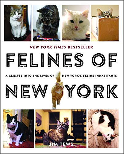 Felines of New York: A Glimpse Into the Lives of New York's Feline Inhabitants from Simon & Schuster