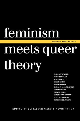 Feminism Meets Queer Theory (Books from differences) from Indiana University Press