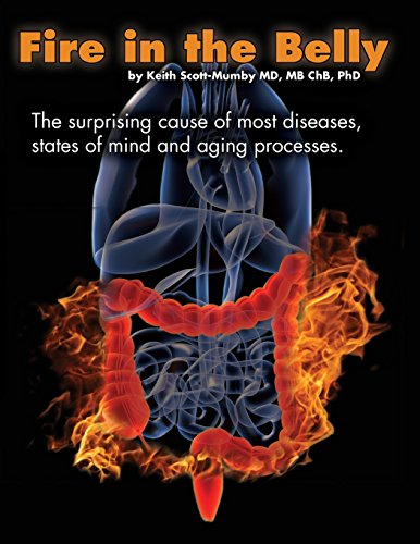Fire In The Belly: The Surprising Cause of Most Diseases, States Of Mind and Aging Processes from Mother Whale, Inc
