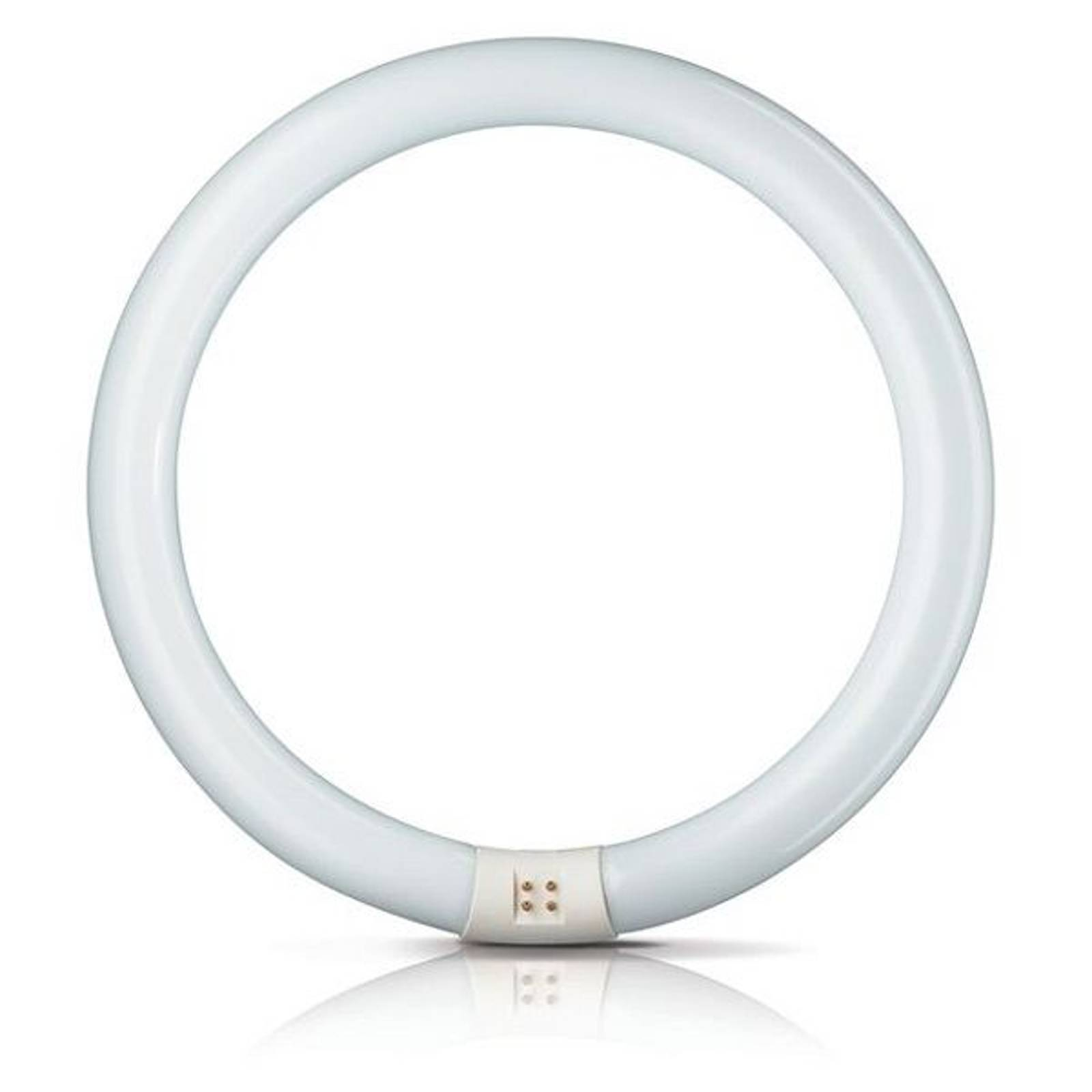 G10q 22W 865 fluorescent ring Master Circular TL-E from Philips