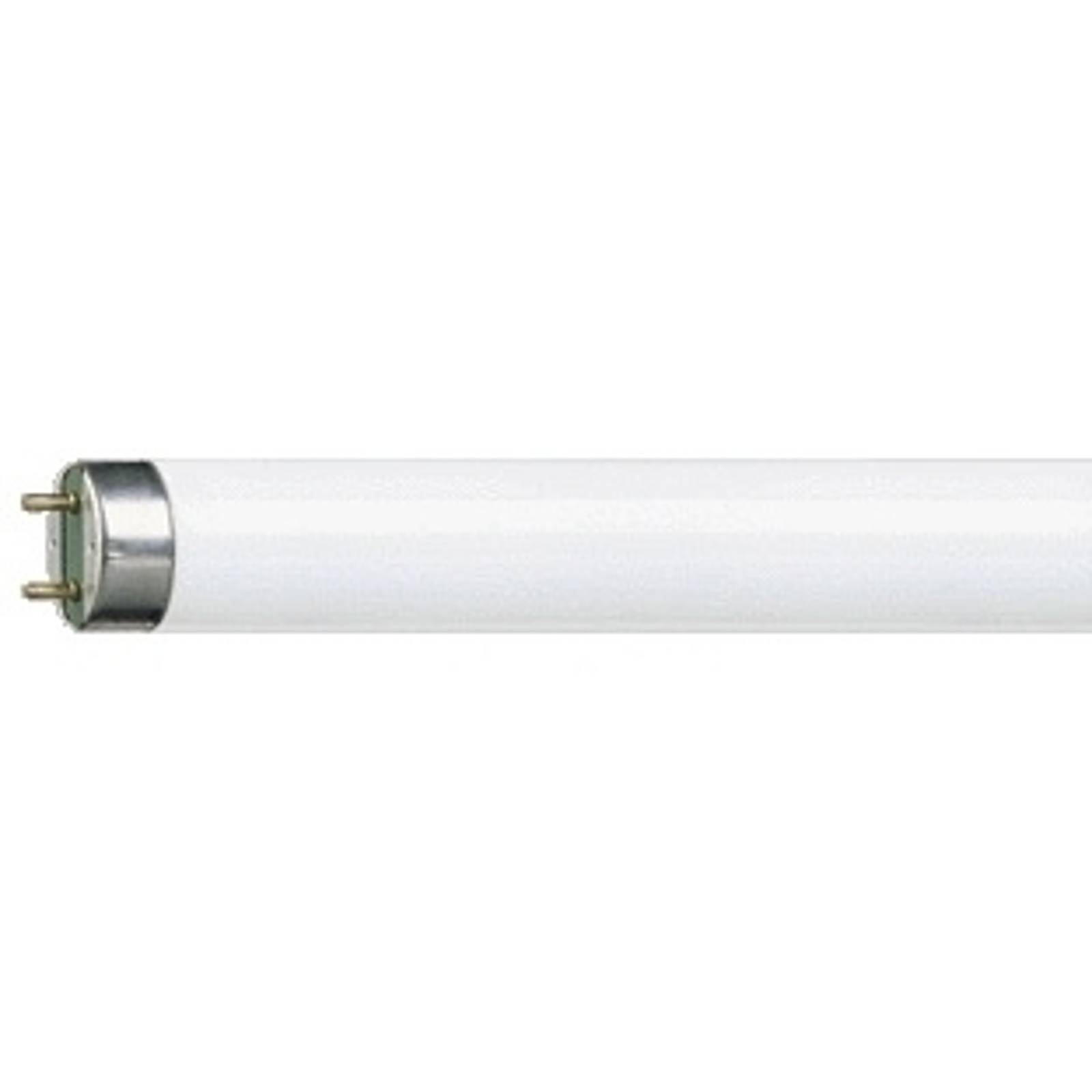 G13 T8 15W fluorescent bulb MASTER TL-D Super 840 from Philips