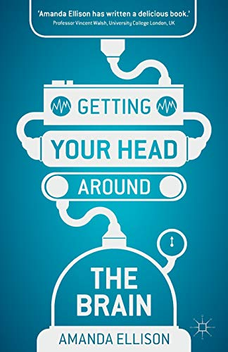Getting your head around the brain from Palgrave