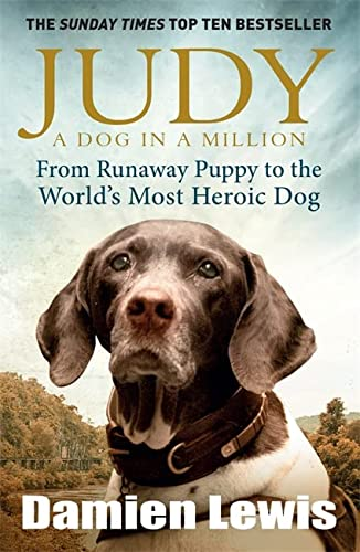Judy: A Dog in a Million: From Runaway Puppy to the World's Most Heroic Dog from Quercus