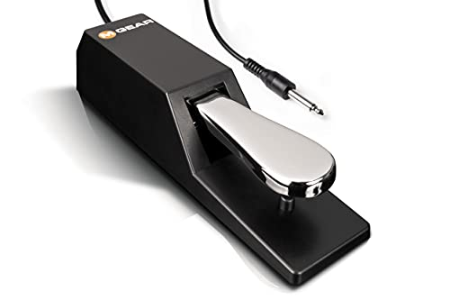 M-Audio SP-2   Universal Sustain Pedal with Piano Style Action for MIDI Keyboards, Digital Pianos and More from M-Audio