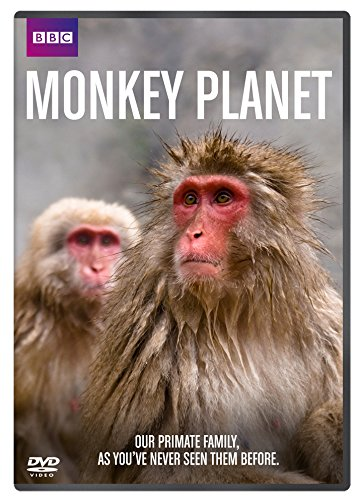 Monkey Planet - BBC [DVD] from Spirit Entertainment Limited