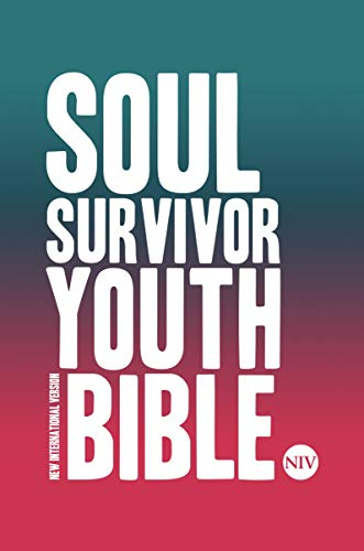 NIV Soul Survivor Youth Bible Hardback (New International Version) from Hodder & Stoughton