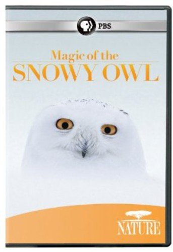Nature: Magic of the Snowy Owl [DVD] [Region 1] [US Import] [NTSC] from PBS