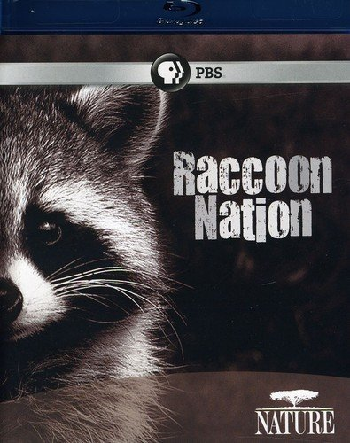 Nature: Raccoon Nation [Blu-ray] [US Import] from PBS