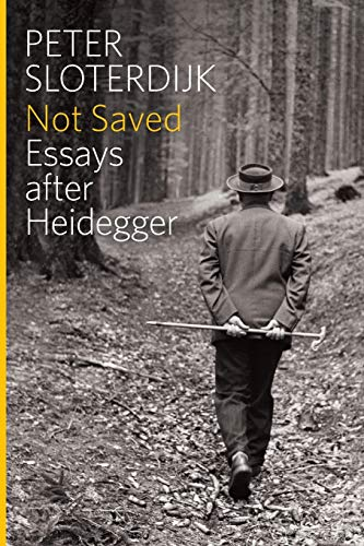 Not Saved: Essays After Heidegger from Polity Press