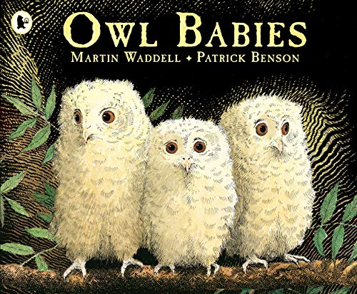 Owl Babies from Walker Books Ltd