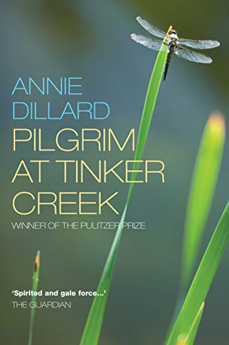 Pilgrim at Tinker Creek from Canterbury Press Norwich