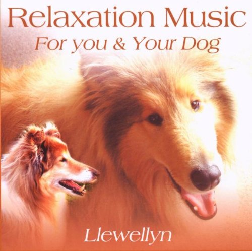 Relaxation For You and Your Dog