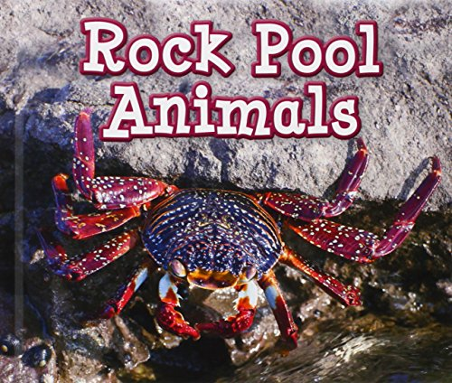 Rock Pool Animals (Animals in Their Habitats) from Raintree